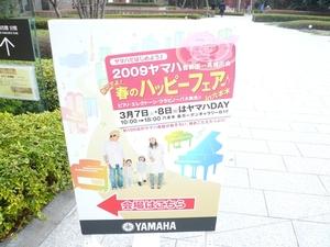 0022009.3.8yamaha.jpg